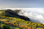 Valley, Lomba de Risco, Plateau of Parque natural de Madeira, Madeira isla — Stock Photo