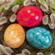 Easter nest with eggs - Stock Photo