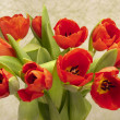 Stock Photo: Easter bunch of tulips