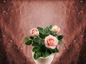Romantische rosen — Stockfoto