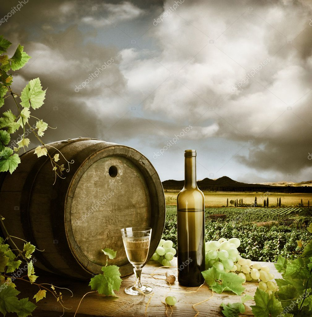 White wine and vineyard in vintage style — Stock Photo #4772184