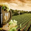 Wine and vineyard — Stock Photo