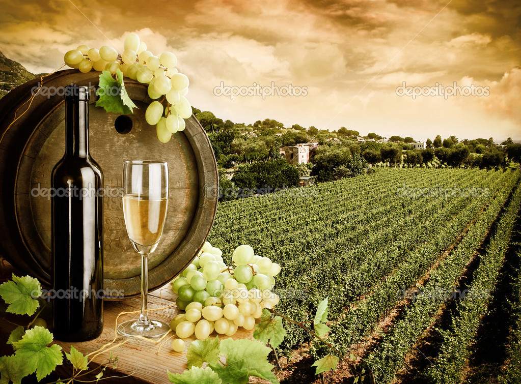 Wine composition with background of vineyard — Stock Photo #4921739