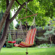 Stock Photo: Hammock in garden