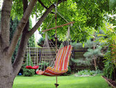 Hammock in garden — Stock Photo