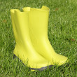Green gumboots — Stock Photo