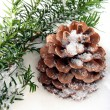 Branch and cone on white snow — Stock Photo