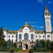 Stock Photo: Targu Mures - Administrative Palace