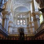 Malaga Cathedral Interior — Stock Photo #4160545