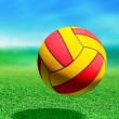 Multicolored ball - Stock Photo