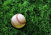 Baseball su erba — Foto Stock