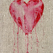 Stock Photo: Bleeding heart
