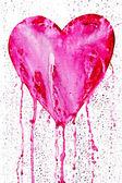 Bleeding heart — Stock Photo