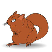 Angry squirrel - vector — Stock Vector