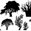 Royalty-Free Stock Vector Image: Vector trees of Africa