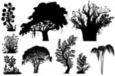 Vector trees of Africa — Vecteur