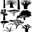 Various African trees and bushes - vector — Stock Vector
