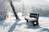 Benches in winter — Stock Photo