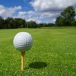 Golf ball on the tee — 图库照片