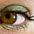 Beautiful female eye — Stock Photo #4239726