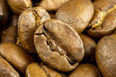 Coffee beans close up — Foto Stock