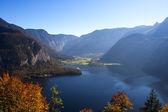 Mountain lake and autumn leaves — Stock Photo