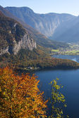 Mountain lake and autumn leaves — Stock Photo