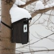 Winter bird house — Stock Photo