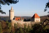 Castle Kokorin — Stock Photo