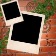 Polaroid on brick wall - Stock Photo