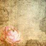 Romance grunge background with rose — Stock Photo