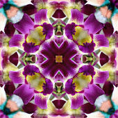Abstract background, kaleidoscope of flowers — Stock Photo