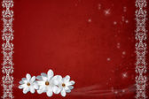 Vintage red background with white flowers and lace border — Stock Photo