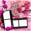 Butterflies and orchids flowers  pink background  with film fram — Stock Photo