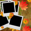 Vintage autumn  background with frames for photo - 图库照片