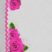 розовые розы фон с copyspace отлично подходит для границы и фонов — Стоковое фото