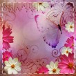 Stock Photo: Album cover in Floral design and butterflies