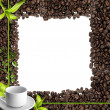 Cup of coffee and a seeds as splendid frame — Stock Photo