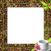 Cup of coffee and a seeds as splendid background — Stockfoto