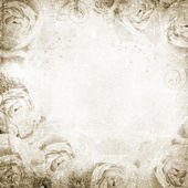 Grunge Beautiful Roses Background ( 1 of set) — Stock Photo