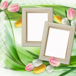 Three picture frames and tulips flowers — Stock Photo