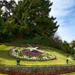 Large flower clock in Vina del Mar, Chile — Stockfoto