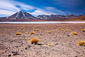 Altiplano lagoon Miscanti close to cerro Miscanti, desert Atacama, Chile — Stock Photo