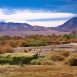 Stock Photo: SPedro de Atacama, Chile