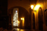 Mysterious narrow alley with christmas tree — 图库照片