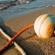 Buoy on the beach at sunrise — Stock Photo