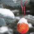 Royalty-Free Stock Photo: Snow-ball on the street tree