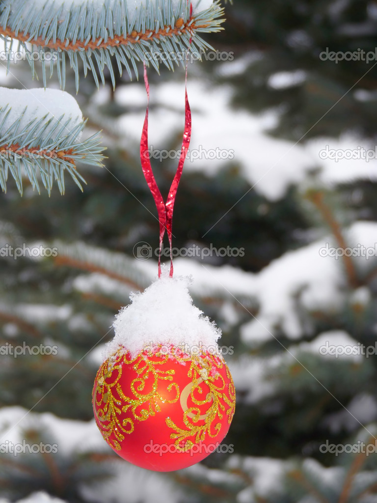 Snow-ball on the street tree   Stock Photo #4539532