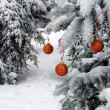 Snow-ball on the street tree - Stock Photo