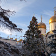 Stock Photo: Golden domes of Orthodox churches, RussiFederation, Moscow Kremlin